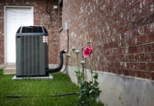 AC unit in a backyard with a spring flower next to it.